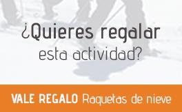 banner Xec Regal