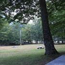 Área de picnic de Conangles