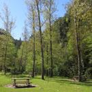Área de picnic de Riugréixer