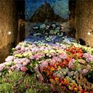 Gerona, Tiempo de Flores