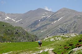Ascensión al Puigmal