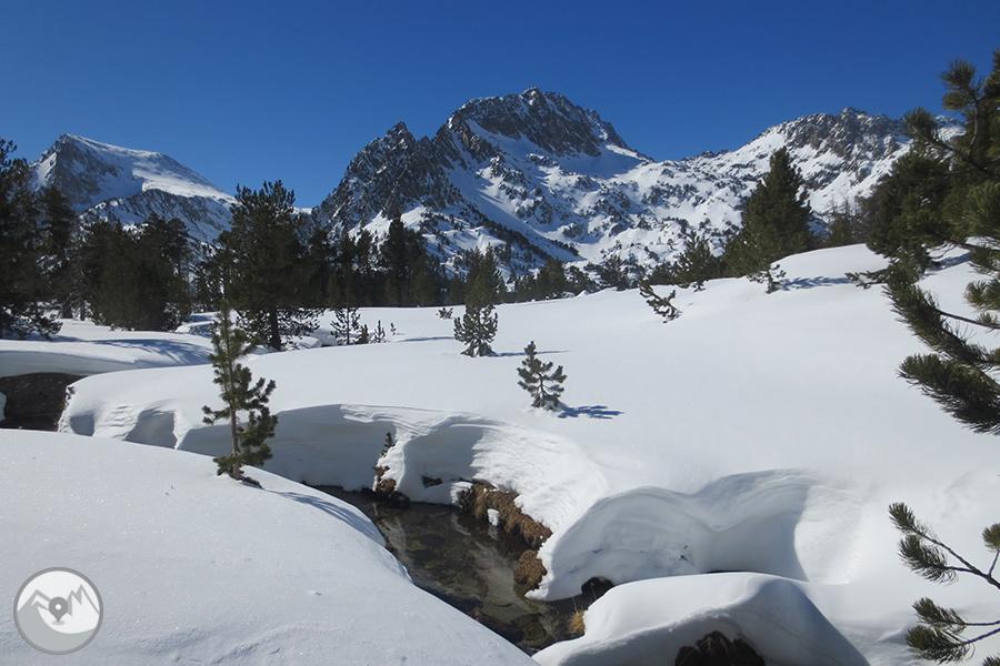 Raquetas de nieve 5