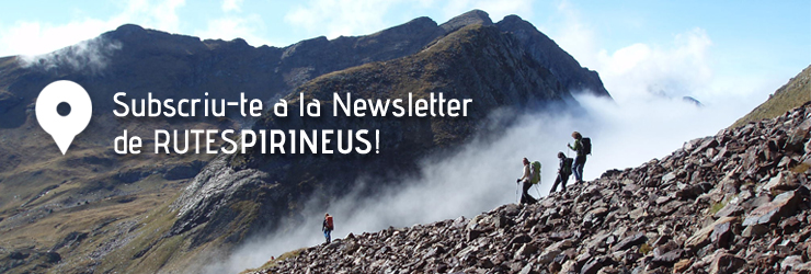 pop up newsletter