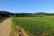 Sierra de Millàs.
