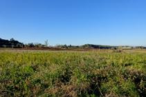 Pla d´en Carabús con vistas al macizo del Canigó.