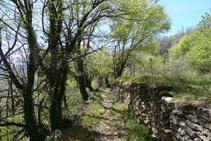 Flanqueamos la montaña por un camino muy bonito.