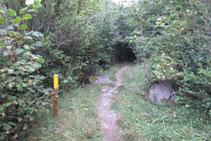 El sendero es claro y encontramos estacas con pintura amarilla.