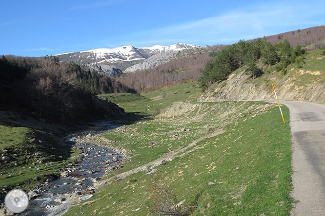 Bosque de Gamueta desde el refugio de Linza 1