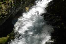 Detalle del canal de agua.