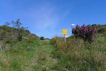 El sendero nos lleva hasta la carretera.