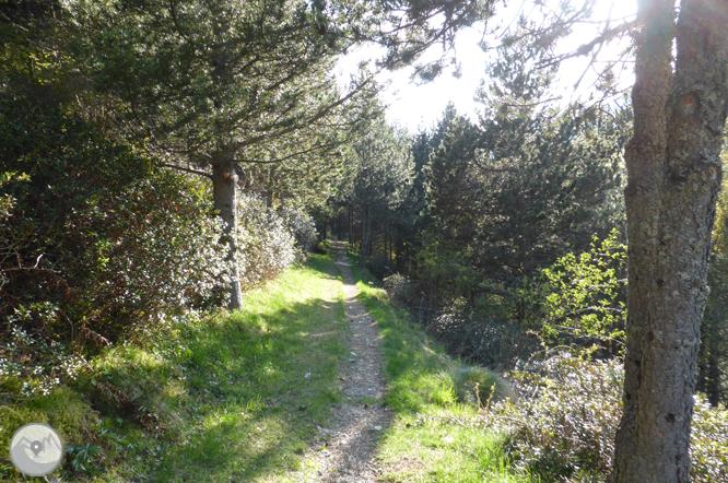 Camino circular de la parroquia de Canillo 1