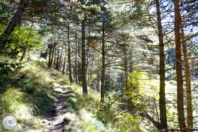 Camino de Percanela - Les Fonts - Pla del Estany 1