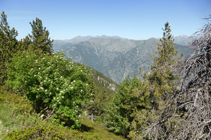 Vistas a la sierra de Enclar desde el camino de los Certeresos.