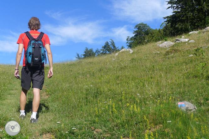 Camino de Zemeto en el valle de Roncal-Belagua 1