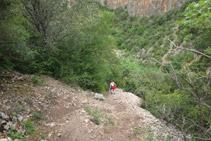 Bajando hacia el fondo del barranco por un tramo bastante empinado y con muchas piedras.