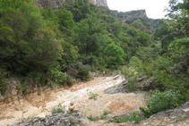Cruzamos el Barranc del Bosc y cambiamos de vertiente.