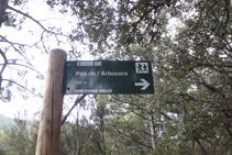 Giramos a la derecha, dejamos atrás el camino que sigue hacia el Pas de l´Arbocera.
