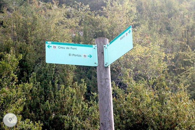 Camino del Portús desde Adons 1