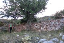 Superamos una zona de bancales y muros de piedras.