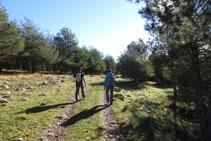 La pista cruza algunos bosques.
