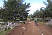 Tomamos una pista de tierra y subimos hacia la cima.