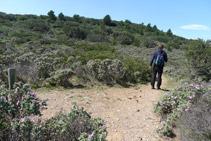 Desde la cabaña de pastores, cogemos ahora el camino de la derecha, que sigue el Cap de Norfeu por su lado N.