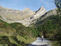Saliendo del bosque vemos el pico de Pineta y la Punta del Forcarral.