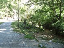Nuevamente en la pista ancha, descartamos un senderó que sale a mano derecha.
