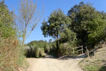 Camino a Sant Miquel.