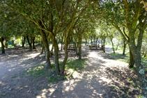 Zona de picnic cerca del castillo de Sant Miquel.