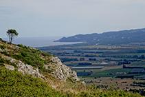 Vistas a la llanura aluvial del Ter y la montaña de Begur desde el collado de Garrigars.