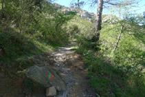 Subimos por la ladera de la montaña.