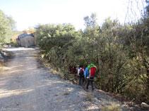Retrocedemos unos metros para bajar por un sendero y coger una pista más abajo.