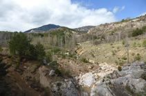 Arroyo de Bosons y Vallcebre.