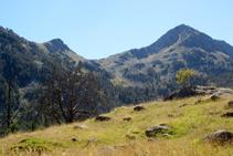 Vistas al collado y al pico de Sendrosa.