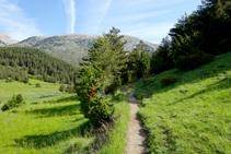 Camino del Collell.