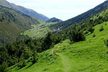 Laderas herbosas camino del Collell.