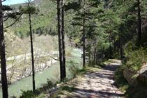 Bajando hacia el puente de Arboló.