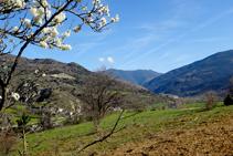 Prados de pasto en el valle del Noguera Pallaresa.