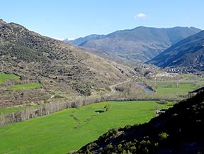 Circular Sort - Estac - Peramea - Gerri - Arboló - Sort