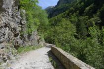 El camino asciende suavemente.