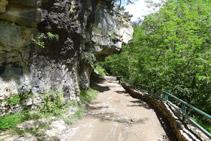 Cueva de Frachinal.