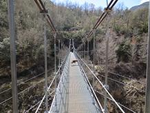 El puente colgante de Sant Jaume.