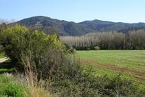 Campos de cereales y montaña del Congost.