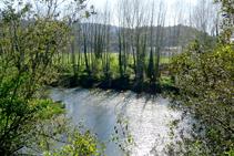 El río cerca del desfiladero.