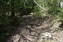 Subimos por un camino marcado con hitos de piedras.