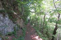 El camino que atraviesa el bosque es cómodo y agradable.