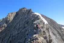 La cresta se vuelve más recortada y aérea.