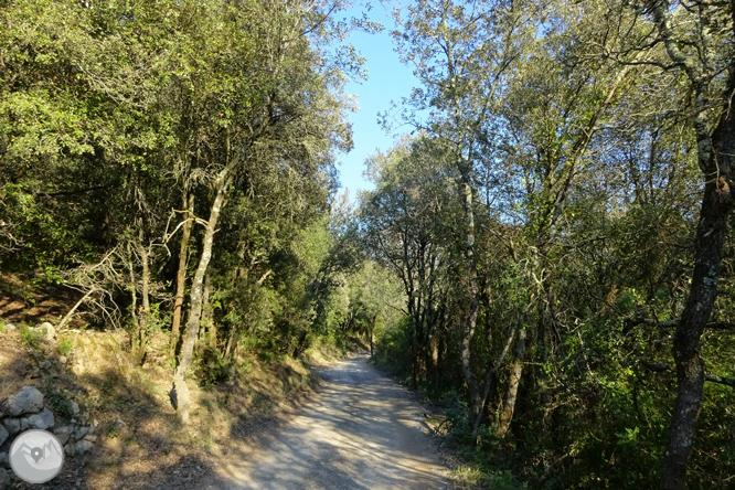 De Sadernes a Santa Bàrbara en la Alta Garrotxa 1