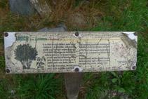 Panel explicativo de uno de los árboles típicos de la zona. En mal estado.